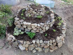 Self-watering Herb Spiral – An Idea Worth Sharing