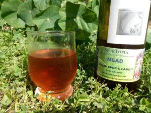 Mead - delicious drink and medicine